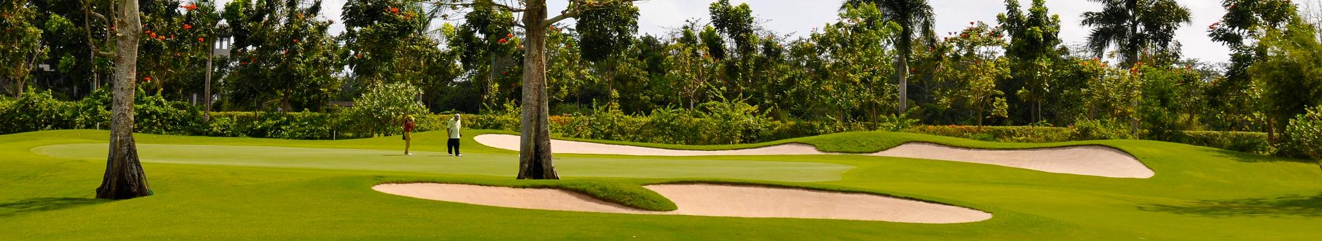 golf mini banner